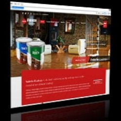 Design website for Painting Company